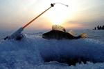 В Запорожской области отец и сын ушли на рыбалку и не вернулись