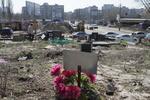 В Киеве с кладбища домашних животных украли фотографии и цветы