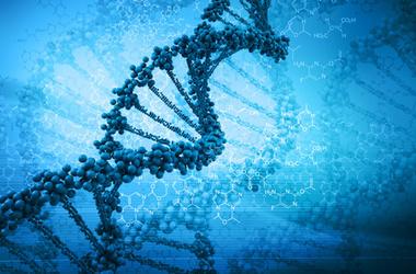 """<p>Послание от Бога в ДНК. Фото:<span class=""""irc_ho"""">zn.ua</span></p>"""