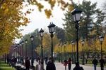 Что сегодня ждет украинцев: погода и гороскоп на 12 октября
