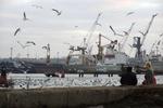 В порту Одесской области произошел выброс аммиака