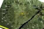 Ученые рассказали о самых древних в мире часах, найденных в Донбассе