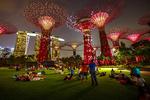 """Самый современный парк в мире поражает """"супер-деревьями"""" и уникальной архитектурой"""