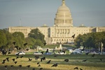В США заявили о серьезном прогрессе в переговорах о бюджете