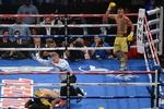 Чемпионский бой Василия Ломаченко под угрозой срыва