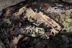 В Крыму сгорела еще одна мечеть, огонь уничтожил священные писания