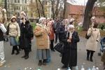 Жители Львова принесли депутатам мертвых кур, насаженных на палки