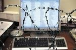 Вслед за fs.to закрытие грозит другим украинским сайтам