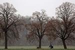 Завтра в Украине ожидаются дожди и похолодание
