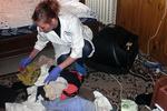 В Одесской области сын ради денег зверски убил родную мать