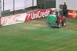 Перед матчем Лиги чемпионов в России покрасили футбольное поле