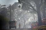 Причиной австралийских пожаров могли стать военные учения