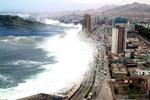 До берегов Японии добралось цунами