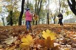 Украинцев ждет сухое осеннее воскресенье