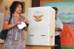 Выборы президента Грузии проходят с драками и штрафами
