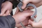 Милиция задержала хулигана, который обстреливал харьковский детсад