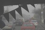 """Туман """"перекрасил"""" Одессу в серый цвет и сделал дороги смертельно опасными"""