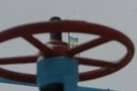 Азаров рассказал, как Украине добыть газ по 110 долларов и стать экспортером