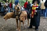 Самые необычные костюмы для детей на Хеллоуин