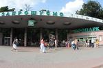 Сотрудникам зоопарка в Киеве перестали платить зарплату