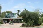 Топ 10 самых больших зоопарков в мире