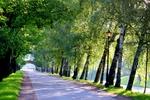 """В Одессе """"временный мэр"""" переименовал аллею в парке Шевченко"""