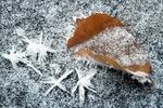 В Одессе обещают мороз, туман и ветер