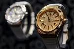 В Польше министр подал в отставку из-за того, что не задекларировал дорогие часы