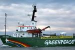 Акции в поддержку арестованных экологов прошли в Индии, Великобритании, Франции, Нидерландах и Польше