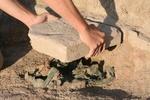 В Турции археологи обнаружили древнейшие артефакты