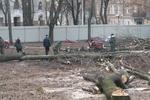 В Харькове люди возмущены строительством храма прямо под окнами их домов