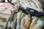 Украина за месяц накупила импортной рыбы почти на 100 миллионов долларов