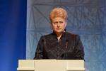 В Литве считают отговорками Януковича о давлении РФ на Украину