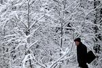 Начало зимы в Украине будет теплым
