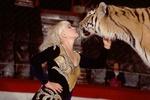 Как укротить тигра и научить дельфина петь