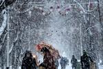 Снегопады и ветер в Украине прекратятся 11 декабря
