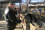 Обитатели Одесского зоопарка размножаются во сне и усиленно едят