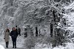 Что сегодня ждет украинцев: прогноз на 7 декабря
