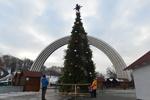 Как выглядит главная елка Киева