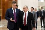 Путин: В России работает до 5 млн украинцев, им надо создать условия