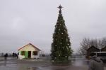 Как выглядит главная елка Украины под аркой Дружбы народов в Киеве