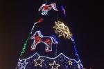 В Донецке испытали главную новогоднюю елку