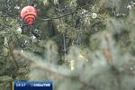 В четверг в Киеве торжественно зажгут елки