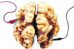 Заставить мозг работать быстрее с помощью упражнений