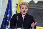 Президент Литвы будет бойкотировать Олимпиаду в Сочи