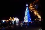 Под Аркой Дружбы народов зажгли новогоднюю елку