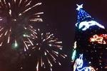 Открытие главной елки Донецка встретили салютом и концертом