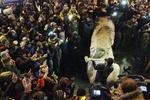 Симоненко не увидел в действиях Пшонки предвзятости