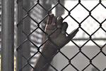17-летняя одесситка получила 7 лет тюрьмы за убийство матери