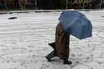 Жертвами снежной стихии в США стали семь человек